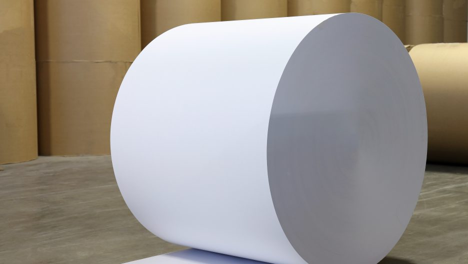Spools of paper, paper mill, pulp and paper